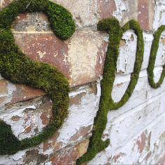 Moss words up close