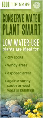 Conserve water - plant smart.