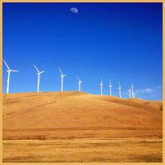 Postcard From California: Windmills In My Head (San Francisco Bay Area Field Trip)