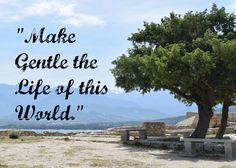 Make Gentle the Life of this World