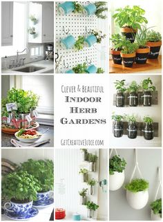 Indoor Herb Garden Ideas-- amazing and beautiful ideas for planting indoor herb gardens in your home or kitchen!