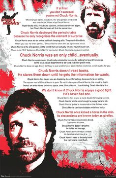 [ CHUCK NORRIS POSTER ] - so fantastical