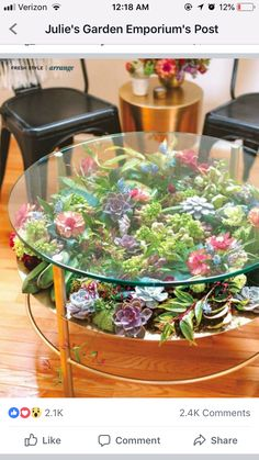 Home Crafts, Easy Crafts, Diy Home, Terrarium Table, Succulent Terrarium, Fish Tank Terrarium, Succulent Plants, Indoor Succulents, Succulent Ideas