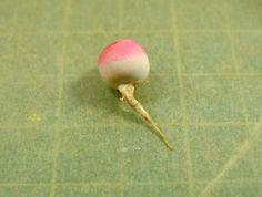 mini turnip