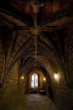 I love the geometry in the vaulting.