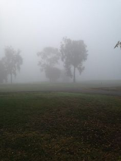 Not such a great morning for #Golf here in #NorCal #WeatherDelay