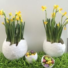 """A dinosaur laid eggs at our house  Made these eggs with my son covering a balloon with Plast of Paris Bandage. The """"grass"""" is an old craft made of paper twine. #crafts #eastern  #easternegg #daffodils #spring #pääsiäinen #pääsiäismuna #askartelu #diy #papertwine #paperinaru by siipale_"""