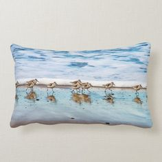 Sandpipers Running Along The Beach Lumbar Pillow - tap/click to get yours right now! #LumbarPillow  #shorebird #sand #piper #nautical #beach Accent Pillows, Floor Pillows, Bed Pillows, Shorebirds, Dog Design, Custom Pillows, Lumbar Pillow, Cool Gifts, Sea Shells
