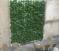 Muro Minigarden Vertical en restaurante