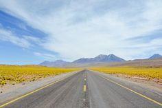 Chili - Désert d'Atacama #OnTheRoad
