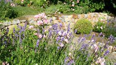 Ein schöner Garten - Romantischer Garten