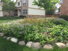 Best Perennial Landscapes Ideas in 2019 Perennial Landscaping Perennial Bed Design Native Landscaping In Oakland County Mi Front Yard Landscaping, Backyard Landscaping, Prairie Garden, Best Perennials, Fertilizer For Plants, Wayne County, Rain Garden, Native Plants, Curb Appeal