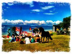 Splore Festival, Tapapakanga Regional Park, NZ Kiwiana, Go Green, Regional, Festivals, Bucket, Park, Summer, Animals, Animales