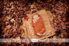 Gold Coast Newborn Photography Outdoor newborn photos