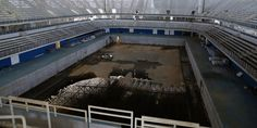 The city of Rio de Janeiro spent over $1 billion dollars on the 2016 Summer Olympics. Six months later, many of the venues look decayed.