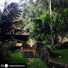 Hay que buscar días para sumergirse en la tranquilidad así como lo hizo @rolandcarreno y compartió #ExperienciasUnicas #Repost @rolandcarreno with @repostapp ・・・ Mi cabaña en Sierra Verde Posada & Spa, en Bejuma, edo. Carabobo. #ecoturismo #naturaleza #CircuitodelaExcelencia #TierradeGracia #comotequierovenezuela @bejumero . . #instapic #instamoment #like #bejuma #carabobo #hospedaje #turismo #ahoraletocaalturismo #cabanas #naturaleza