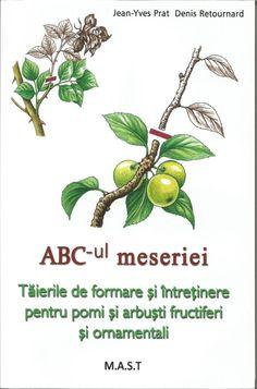 Altoirea pe intelesul tuturor - Editura M. Garden Pool, Garden Beds, Place Cards, Place Card Holders, Gardening, Homesteading, Art, Agriculture, Plant