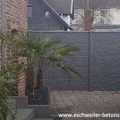 Marvelous  betonzaun garten vorgarten sichtschutz Schallschutz kowalewski anthrazit Nachbarschaft