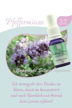 32 Pfefferminze 10 ml Shampoo, Soap, Personal Care, Bottle, Peppermint, Alternative Medicine, Self Care, Personal Hygiene, Flask