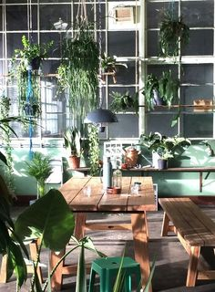 38 Stunning Urban Jungle Room Decor That Will Make Your Home More Cozy - Decor Renewal Interior Garden, Interior And Exterior, Interior Design, Jungle Room, Indoor Plants, Planting Flowers, Living Spaces, Room Decor, House Design