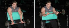 The Elite Trainer - Target The Brachialis For Bigger Arms
