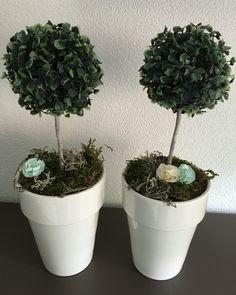 Buxusbollen, stengels van oude foambloemen, foamschuim, mos, roosjes en een mooie bloempot!