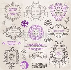 Vector Set: Calligraphic Design Elements and Page Decoration, Vi