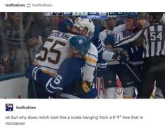 """leafbabies: """"ok but why does mitch look like a koala hanging from a tree that is ristolainen """" Hockey Baby, Ice Hockey, Funny Hockey Memes, Caps Hockey, Mitch Marner, Maple Leafs Hockey, Hockey Boards, Florida Panthers, Toronto Maple Leafs"""