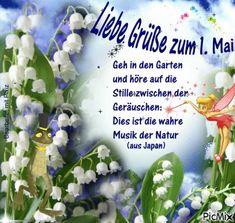 1. Mai, Hanukkah, Good Morning Tuesday, Good Morning Funny, Creative, Balcony