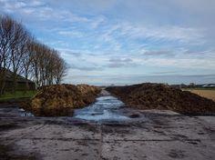 #dung #manure #fromthepolder #noordholland #igersholland #fertilizer #farm #holland