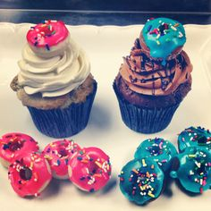 Mini cake donut topped cupcakes from Sweet Dreams, Cupcake! in Geneva, IL.