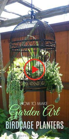 Birdcage Pflanzgefäße sind ein Favorit bei kreativen Gärtnern. Diese Tipps teilen Ideen für die Einrichtung eines neuen oder Upcycling-Vogelkäfigs als Pflanzgefäß für Sukkulenten oder Einjährige. Birdcage Planter, Bird Cage, Garden Art, Succulents, Planters, How To Make, Potted Flowers, Pot Plants, Succulent Plants