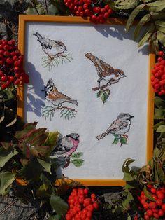 Ptačí