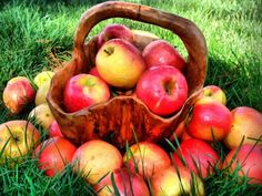 маска из яблок
