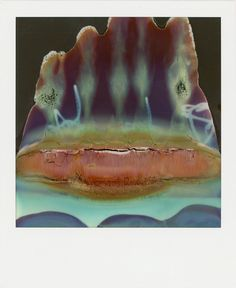 William Miller turns damaged polaroids into fascinating and beguiling abstract artworks