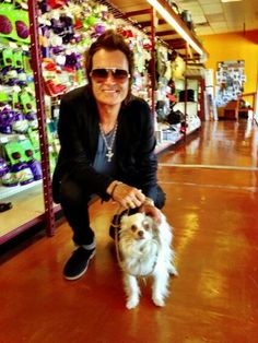 Lily and Daddy In the pet store. Lily is 12... long hair Chihuahua. She is loved...