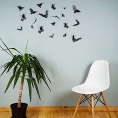 Birds – Black Satin from 3D Wall Art Accents - R299 (Save 0%)