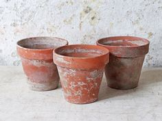 These lovely large-sized rustic terracotta plant pots - sold as a set of 3- would be the perfect home for your self-grown kitchen herbs. #plantpots #terracottapots #terracotta #gardeninspo Vintage Outdoor Furniture, Terracotta Plant Pots, Kitchen Herbs, Hard Water, Interior Accessories, Potted Plants, Interior And Exterior, Planter Pots, Rustic