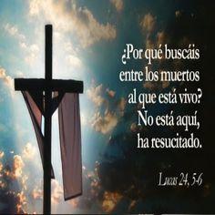 Frases Bonitas Para Facebook: Imagenes Con Frases De La Biblia  Para El Domingo ...