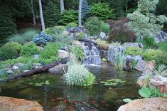 waterscapes create beautiful backyards, flowers, landscape, ponds water features, TRD Designs created this waterfall and pond