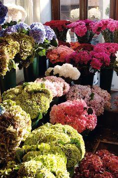 Flower Shop FROM: Tempo da Delicadeza