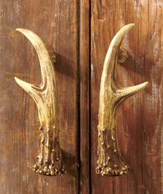 Decorative Antler Hardware: I'd like to have this as part of my bookcase.