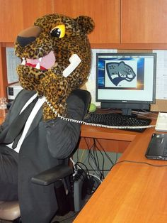 Al. E Cat in the office. Another day another dollar!