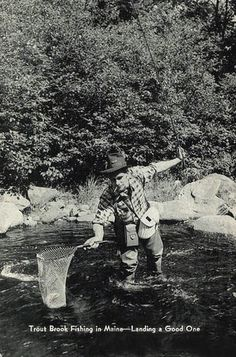 """Postcard: Trout Brook Fishing, Maine """"Landing A Good One"""""""