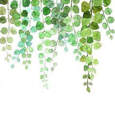 Watercolor Plants, Watercolor Leaves, Easy Watercolor, Watercolor Cards, Watercolor Illustration, Floral Watercolor, Watercolor Paintings, Plant Art, Botanical Art