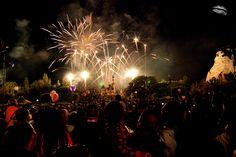 Disney Land / California  Fireworks show. May I tell you, I completely LOVED Disneyland