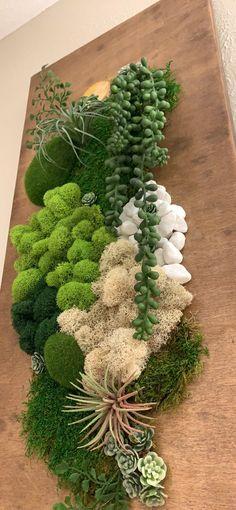 Succulent Frame, Succulent Wall Art, Plant Wall Decor, House Plants Decor, Hanging Wall Art, Hanging Plants, Vertical Plant Wall, Moss Wall Art, Moss Art