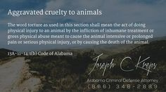 13A-11-14.1(b) Code of #Alabama - Aggravated cruelty to animals  The word torture as used in this section shall mean the act of doing physical injury to an animal by the infliction of inhumane treatment or gross physical abuse meant to cause the animal intensive or prolonged pain or serious physical injury, or by causing the death of the animal.  #Criminal Defense #Lawyer #AL #KLF