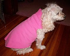 No sew sweatshirt for a dog (or cat) from an old pair of sweat pants or shirt.