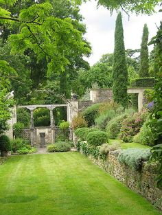 Old world garden. Stone wall. Lawn. Ground covers spilling over the edge. Cypress towers.
